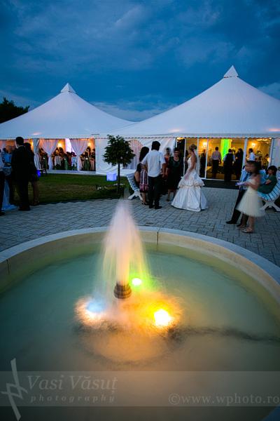 59 foto video nunta bacau